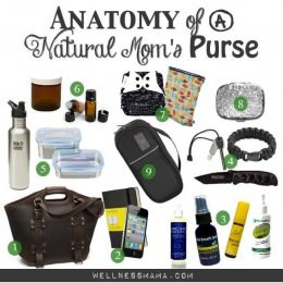 physiology of an all natural Moms Purse