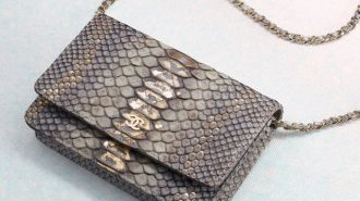 Chanel Python Wallet on Chain Flap Bag